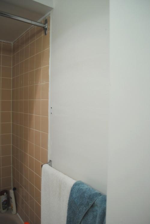 Bathroom wall before